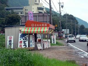 ぶどうの直売店