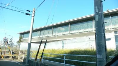 国際便ターミナル