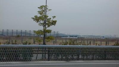 中部臨空都市空港対岸部