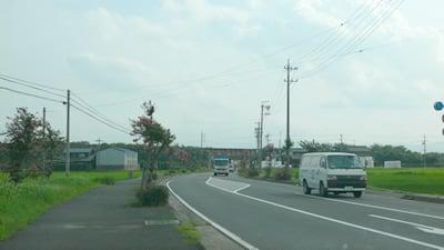 県道219号線沿い