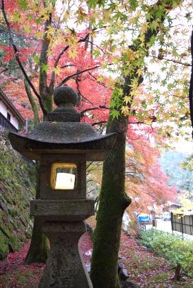 横蔵寺の紅葉