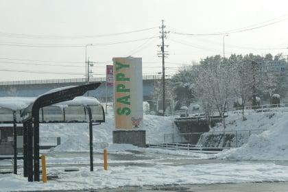 サピーショッピングセンター