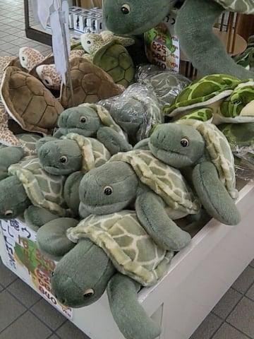 ウミガメのおもちゃの写真