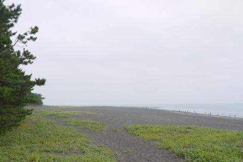 三保の松原の写真