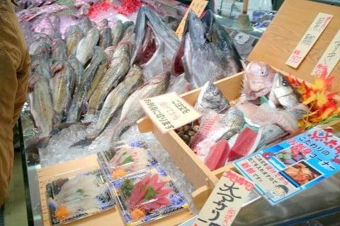 魚太郎の写真