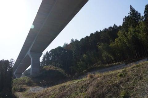 浜松いなさJCTの写真
