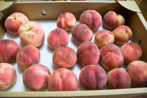 上々な桃の写真