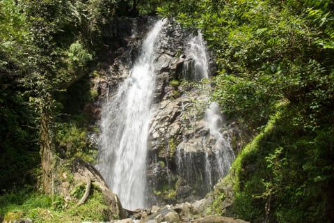 不破の滝の写真