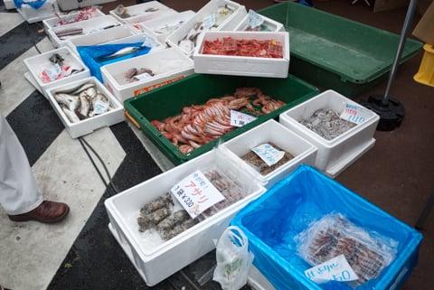 新鮮なお魚の写真