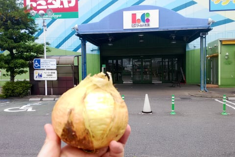 玉ねぎの無人売店の写真
